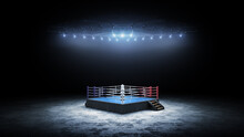 3D Boxer Arena. Isolated Empty...