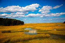 Saltgrass Wetlands Galong Cape Cod Bay Near Sandwich, Massachusetts