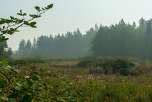 Smoke From Oregon Wildfires Cr...