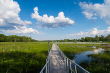 """View Of A Walkway In The """"Plai..."""