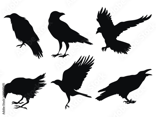 Fotografia set of ravens a collection of black crows silhouette of a flying crow