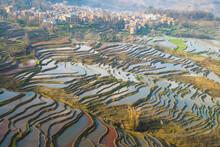 Terraced Rice Fields Of Yuanya...