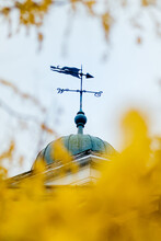 Weather Vane And Autumn Leaves