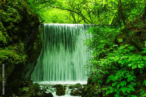 自然に囲まれた人工滝