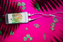 Smartphone With Ear-buds Shaping A Music Note Symbol And Green Cut Plants