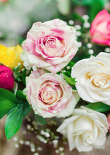 Close Up Of Motled Cream And Pink Roses In Flowers Bouquet