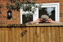 Nosy Neighbor Peeking Over The Fence, Spying On His Neighbours During The Covid-19 Lockdown
