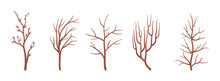 Dry Tree Brown Branches Set, D...