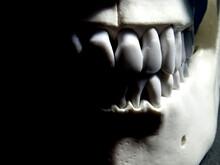 Memento Mori, Human Skull In D...