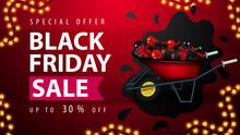 Special Offer, Black Friday Sa...