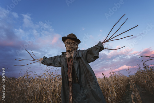 Fototapeta Scary scarecrow in a hat on a cornfield in orange sunset background