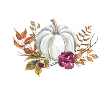 Autumn Pumpkin Arrangement, Isolated On White Background. White Pumpkin, Fall Flowers, Leaves, Tree Branches. Rustic Style Illustration. Thanksgiving Card.