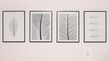 Abstract BW Photographs Agains...