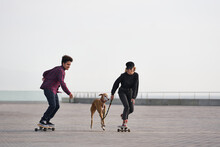 Couple Of Skateboarders With D...