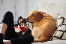 Boy With A Dog Watching Video ...