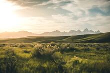 Grand Tetons And Grassland