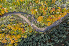 Aerial View Of Forest Divided By A Curving River