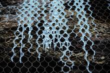 Ice Surrounding A Metallic Fence