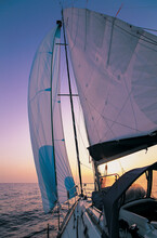 Sailboat Rigged With Spinnaker...