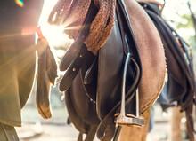 Saddle And Stirrup