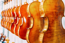 Contemporary Shiny Violins Hanging On Wall In Row In Bright Musical Instrument Shop