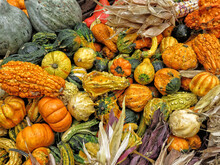 Top View Of Harvest Of Various...