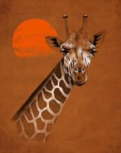 Illustration Of Giraffe Against Sun