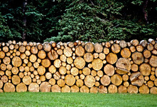 Stacked Woodpile For Long Arct...