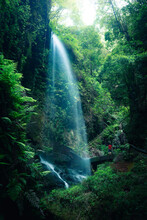 Low Angle Of Spectacular Scenery Of Waterfall In Long Exposure In Woods With Green Plants In Highland Area