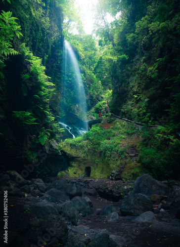 Low angle of spectacular scenery of waterfall in long exposure in woods with green plants in highland area - 380752406