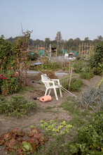 White Chair And Gardening Tools In A Big Vegetable Garden
