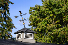 Leaning Metal Weathervane On A...