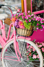 A Pink Cruiser Bike With A Basket Full Of Assorted Flowers
