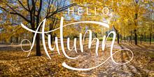 Autumn Banner With Landscape A...