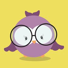 Owl With Eyeglass