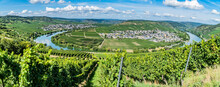 Panorama From Moselle Valley