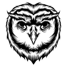 The Tattoo Of  Owl's Head