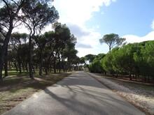 Carretera A Través De La Casa...