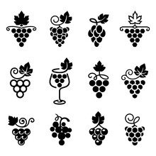 Set Of Leaves, Bunch Of Grapes In Simple Flat Style. Logos, Icons For Wine Design Concept, Wine Or Juice Labels, Grape Seed Oil,  Winery, Viticulture, Healthy Vegan Food Etc. Vector Illustration.