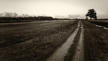 Lonely Country Road Near The R...