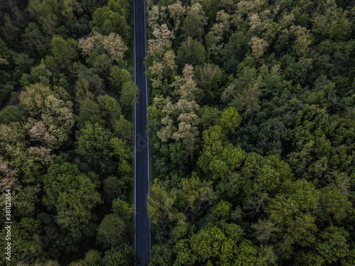 Fotografie, Obraz Road from the bird perspective