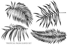 Vector Set Of Hand Drawn Black...