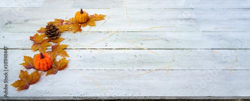 Cuadros en Lienzo illustration sur la saison de l'automne représente par des feuilles citrouille e