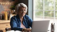 Focused Happy Elderly 60s Grey...