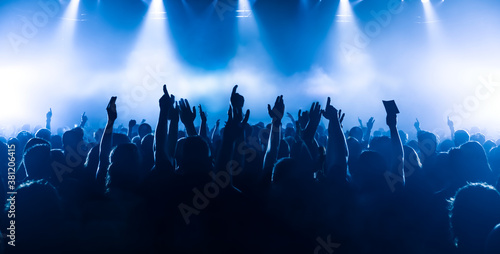 crowd of people dancing in front of the stage at rock concert Canvas