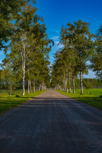 A Straight Road Running Under ...