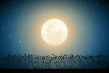 Landscape With Tall Grass. Full Moon In Night Starry Sky
