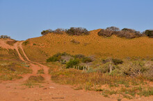 A Four Wheel Drive Track Passing Over A Red Dune