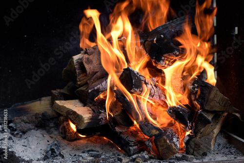 Photo barbecue et feux de camp