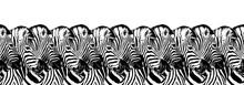 Striped Zebras Seamless Patter...